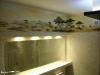 sawanna na ścianie
