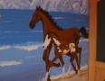 Artystyczne konie